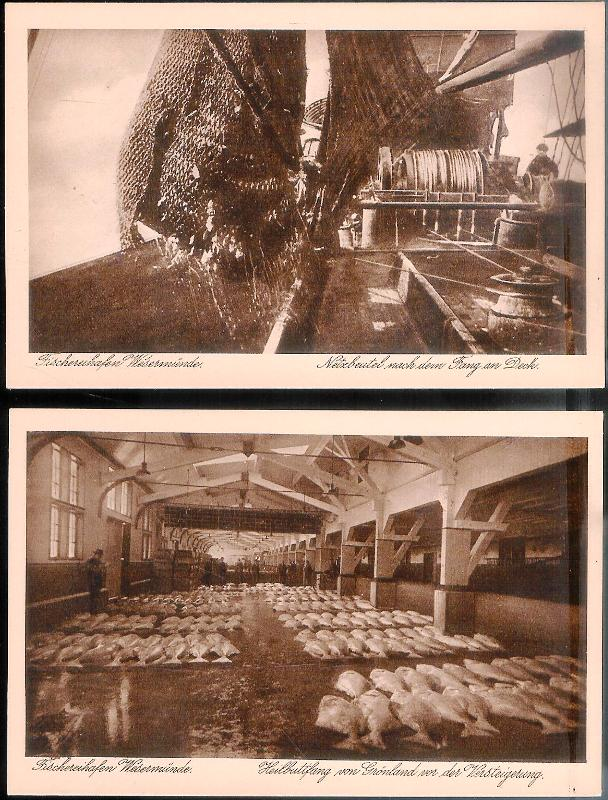 2 Postkarten: 1. Heilbuttfang von Grönland vor der Versteigerung. 2. Netzbeutel nach dem Fang an Deck.