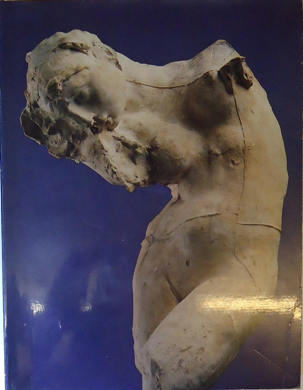 RODIN Rediscovered. With contributions by Albert Alhadeff, Ruth Butler, Jean Chatelain, Albert E. Elsen, Sidney Geist, etc.